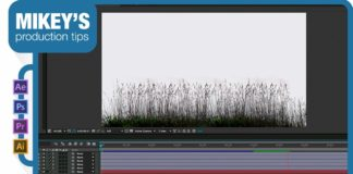 Quick-Tip-CC-Slant-breezy-grass