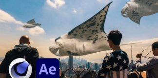 Floating-Sea-Animals-in-Cinema-4D-amp-After-Effects